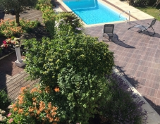 Flower-garden-and-swimming-pool-resized